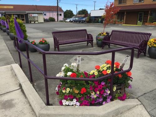 Pocket Park Lavender